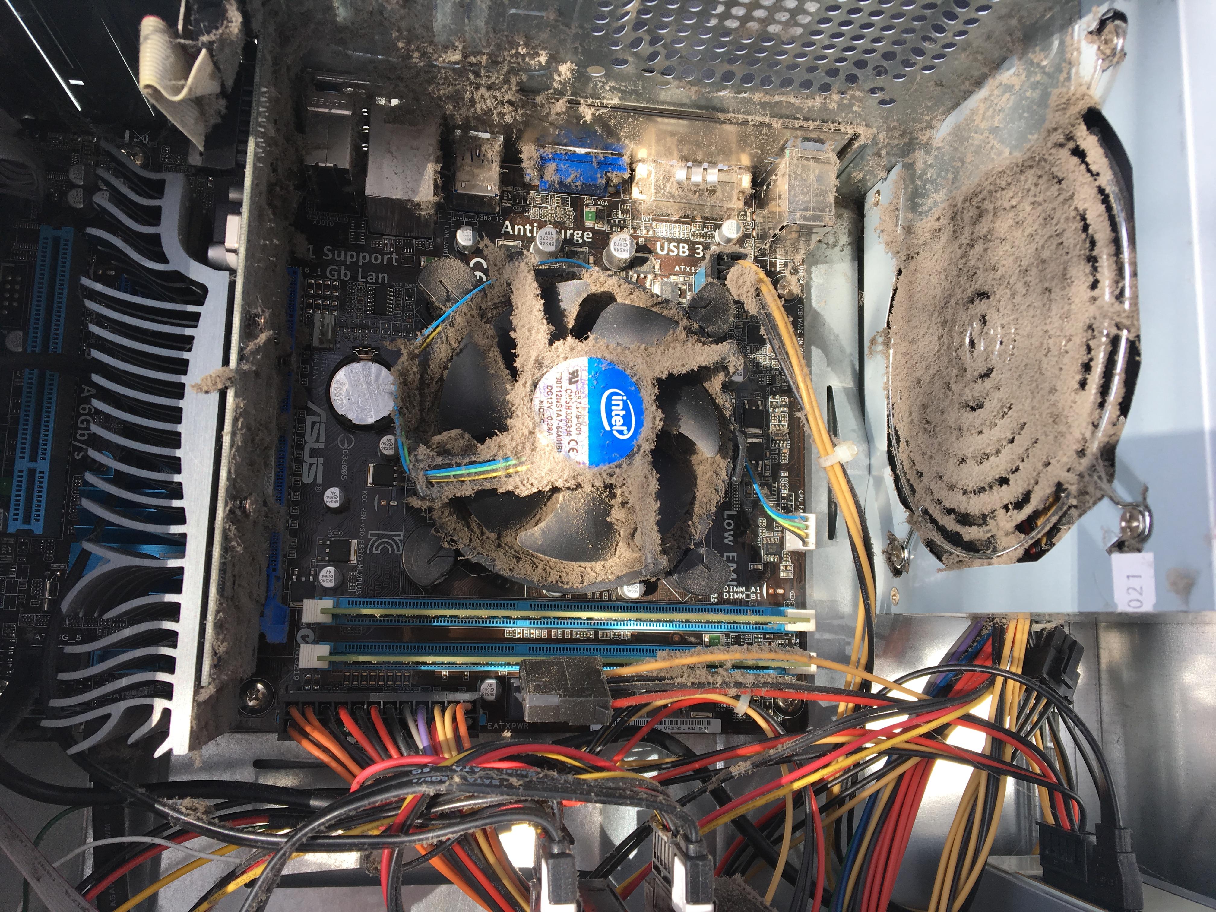 Stofvrij maken van computer   Computerhulp Stedendriehoek